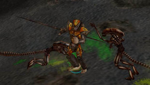 Aliens Versus Predator: Extinction Screenshot 17