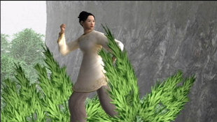 Crouching Tiger, Hidden Dragon™ Screenshot 68