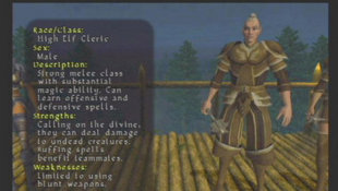 Champions of Norrath Screenshot 24