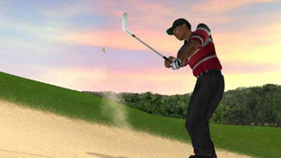 Tiger Woods PGA Tour 2004 Screenshot 2