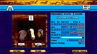 Breeders' Cup World Thoroughbred Championships Screenshot 3