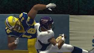 Arena Football: Road to Glory Screenshot 3