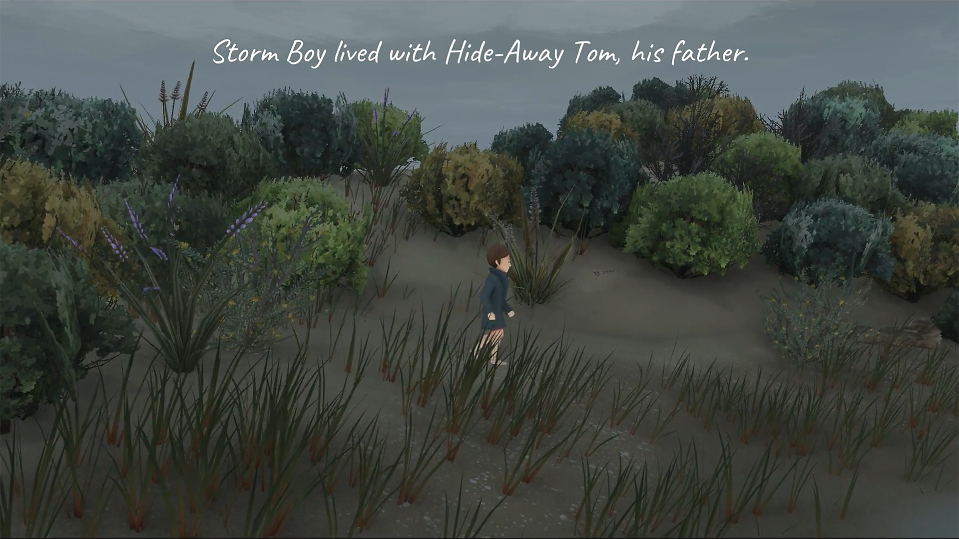 "Storm Boy walking through brush. ""Storm Boy lived with Hide-Away Tom, his father."""