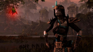 The Elder Scrolls Online: Tamriel Unlimited Screenshot 18