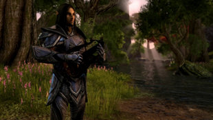 The Elder Scrolls Online: Tamriel Unlimited Screenshot 33