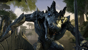 The Elder Scrolls Online: Tamriel Unlimited Screenshot 27