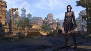 The Elder Scrolls Online: Summerset Screenshot 3