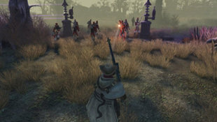 The Incredible Adventures of Van Helsing: Extended Edition Screenshot 5