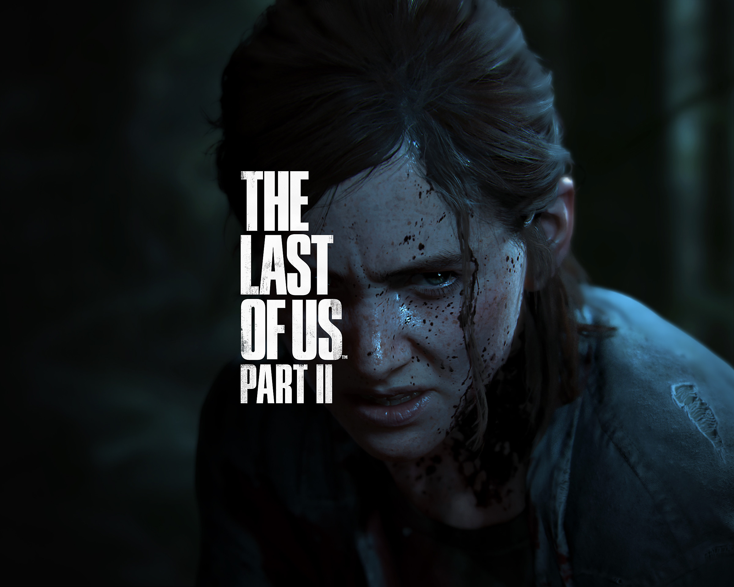 The Last of Us Part II Decorative Background