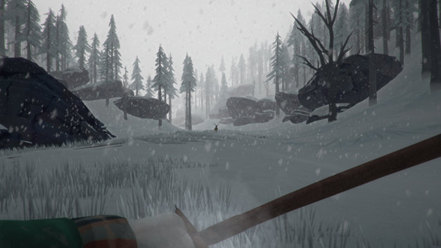 The Long Dark Screenshot 10
