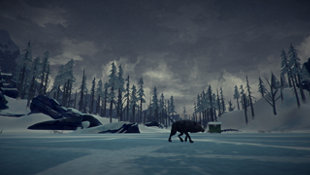 The Long Dark Screenshot 12