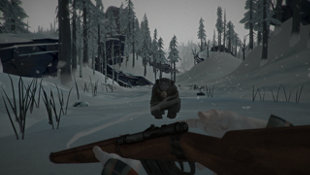 The Long Dark Screenshot 9