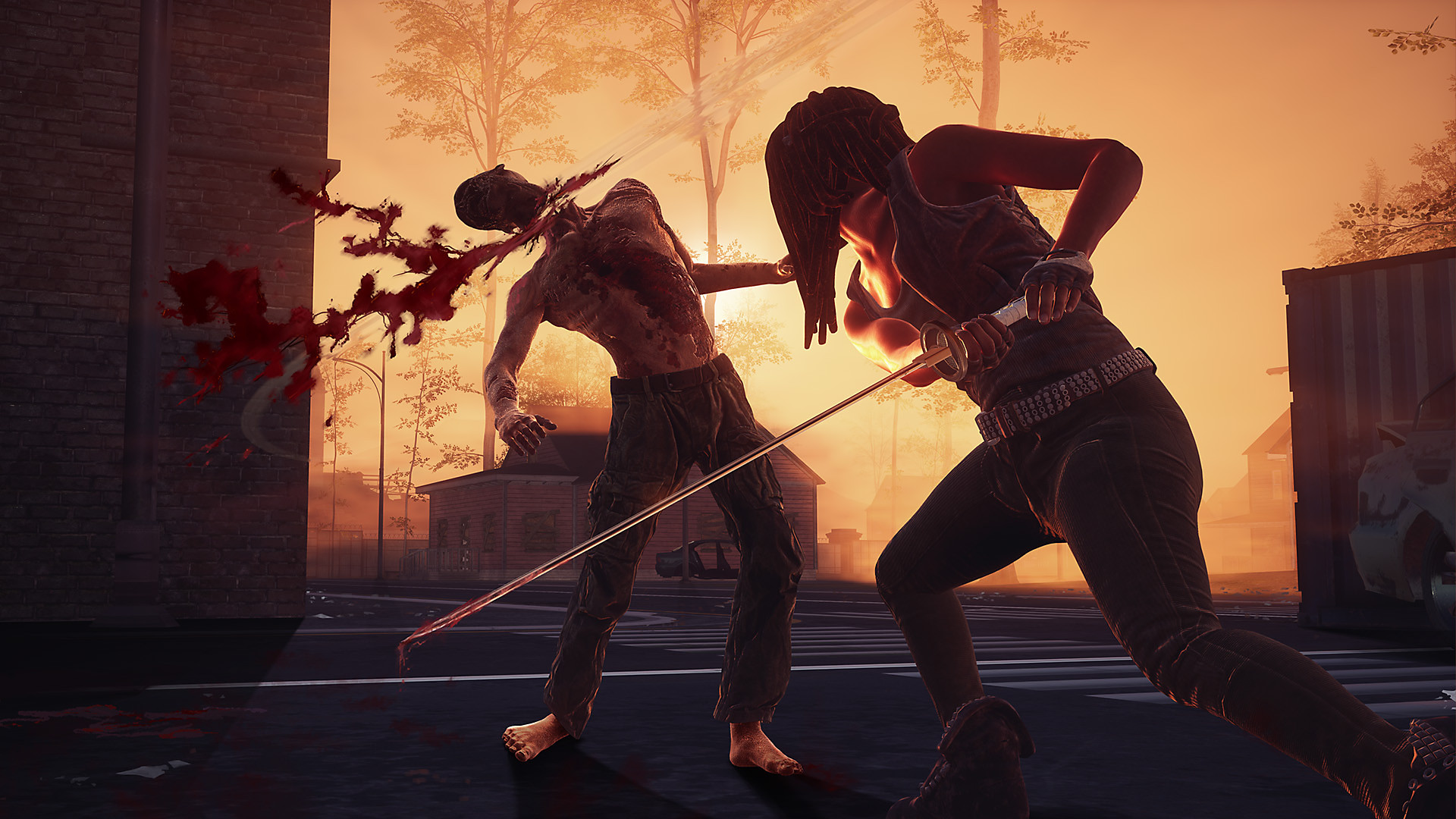 Michonne attacking a walker