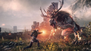 The Witcher 3: Wild Hunt Screenshot 17