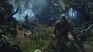 The Witcher 3: Wild Hunt Screenshot 6