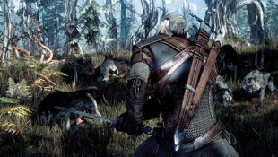 The Witcher 3: Wild Hunt Screenshot 11