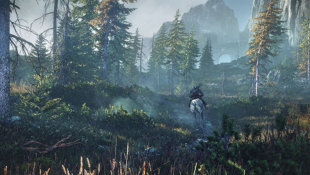 The Witcher 3: Wild Hunt Screenshot 9