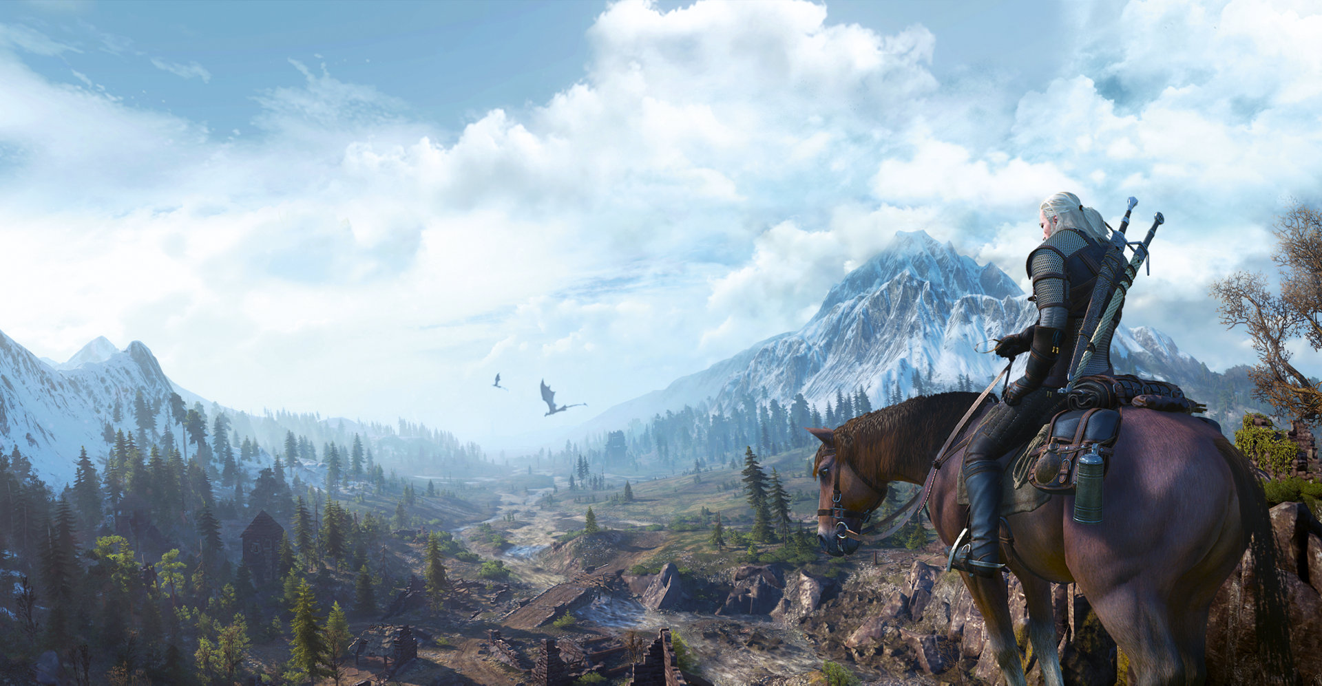 Image result for The Witcher 3: The Wild Hunt world