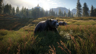theHunter: Call of the Wild Screenshot 6