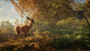 theHunter: Call of the Wild Screenshot 8