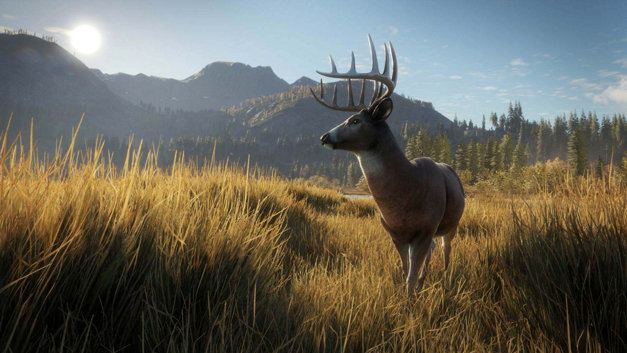 theHunter: Call of the Wild Screenshot 4