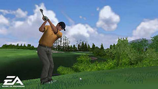 Tiger Woods PGA Tour Screenshot 3