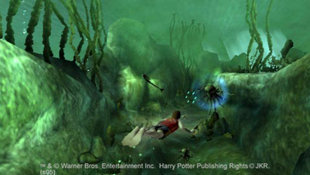 Harry Potter and the Goblet of Fire Screenshot 2