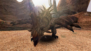 Monster Hunter Freedom Screenshot 6