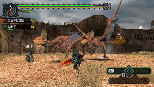 Monster Hunter Freedom Screenshot 8