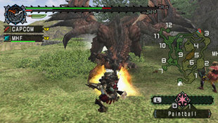 Monster Hunter Freedom Screenshot 9