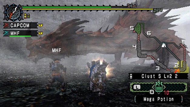 Monster Hunter Freedom Screenshot 10