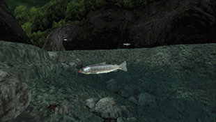 Reel Fishing: Life  &  Nature Screenshot 2