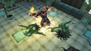 Dungeon Siege: Throne of Agony Screenshot 15
