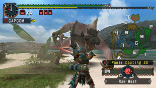 Monster Hunter Freedom 2 Screenshot 3