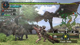 Monster Hunter Freedom 2 Screenshot 5