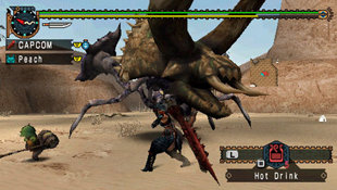 Monster Hunter Freedom Unite Screenshot 2