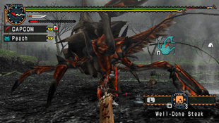 Monster Hunter Freedom Unite Screenshot 5