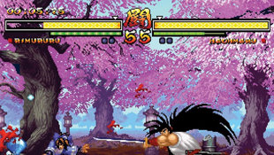 Samurai Showdown Anthology Screenshot 2