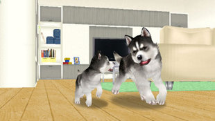 Petz® Dogz® Family Screenshot 2