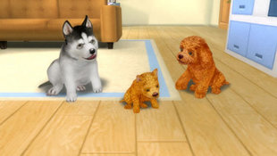 Petz® Dogz® Family Screenshot 3