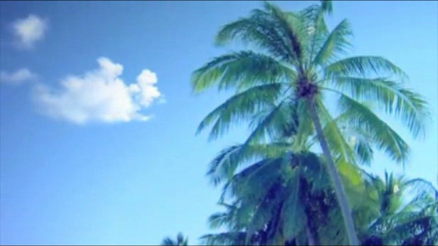 Dead or Alive® Paradise Video Screenshot 1