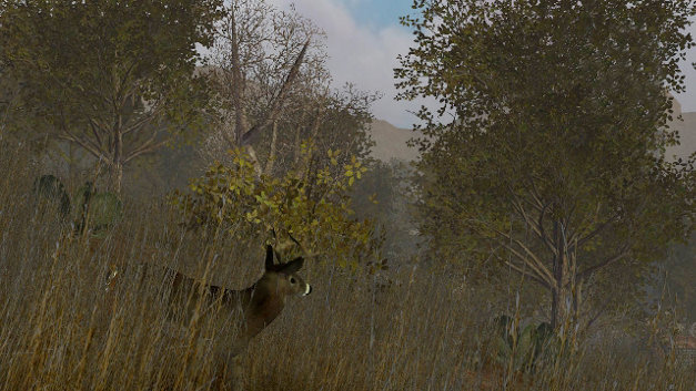 Whitetail Challenge Screenshot 1