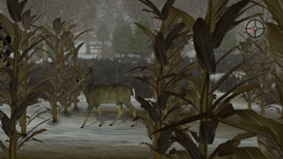 Whitetail Challenge Screenshot 5