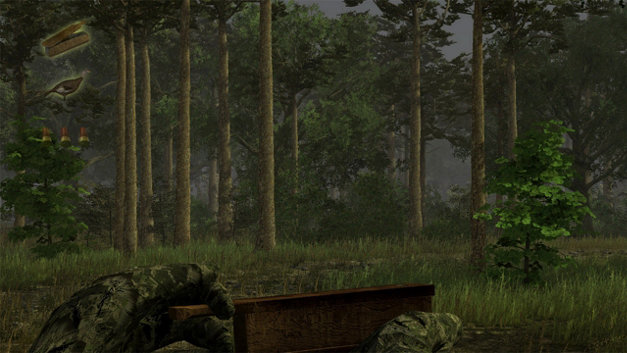 Wild Turkey Hunter Screenshot 4