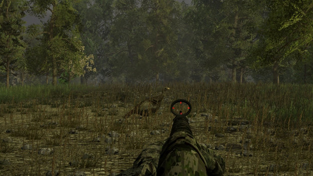Wild Turkey Hunter Screenshot 7