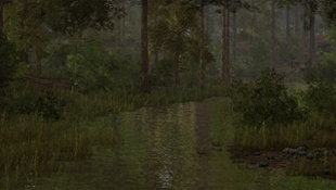 Wild Turkey Hunter Screenshot 3